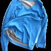 Long sleeved Vest