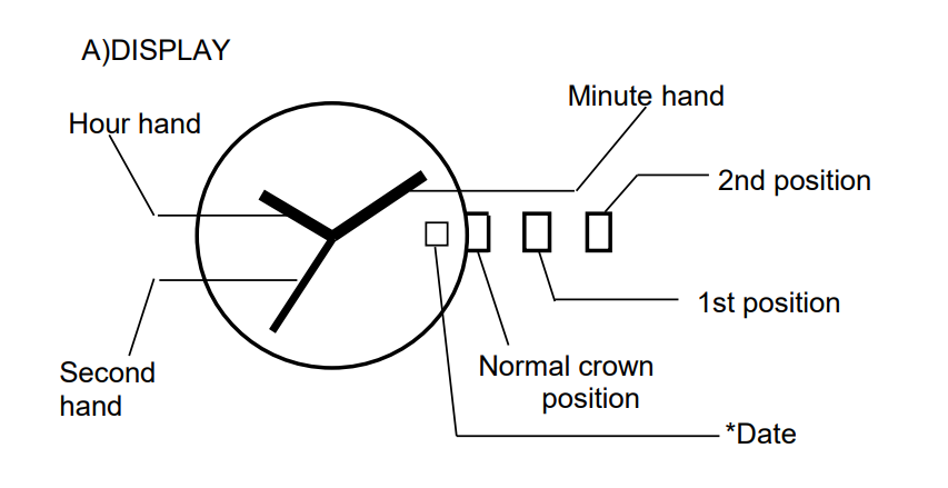 Movement Mechanical Watch